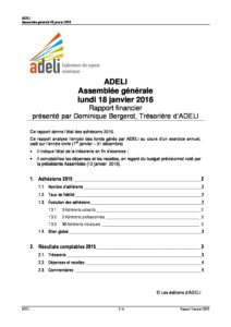 ADELI- Rapport Financier 2015 5
